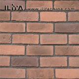 Pietra coltivata artificiale del mattone per la decorazione della costruzione (YLD-10069)