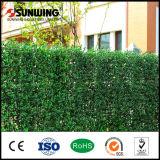 Clôture artificielle en plastique facilement assemblée de feuilles de vert de qualité