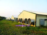 Bauernhof-Maschinerie im Geflügel-Haus mit Berufsrat und Plan für freies