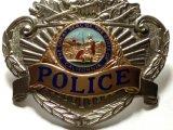 La policía de encargo del metal Badge con la galjanoplastia 3D para el ejército/la policía