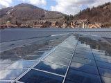 Pared de cortina de aluminio de cristal del precio del material de construcción