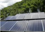 Ebst-P310 de groene Poly ZonneModule van de Energie 310W