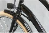 bici eléctrica de la batería de litio 250W con ISO (JSL038S)