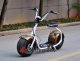2016 nueva vespa eléctrica grande de la rueda 800W Citycoco