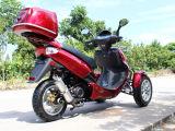 고품질 기동성은 가스에 의하여 강화된 150cc Trike 스쿠터를 위로 서 있다