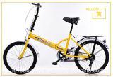 مدينة شعبيّة رخيصة يطوي أطفال درّاجة ([ل--83])
