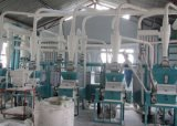 아프리카 Market Quality 36t Wheat Flour Machine