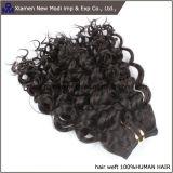 中国のWeft人間の毛髪の拡張巻き毛の人間の毛髪