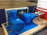 Cyyp 51 Uninterrupted Service Large FlowおよびHigh Pressure LNG Liquid Oxygen Nitrogen Argon Multiseriate Piston Pump