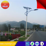 Nuovo Technology 10m 80W Solar LED Street Light Price