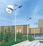 IP65 éclairage solaire de jardin de la qualité 20W-200W dans le réverbère solaire