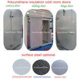 Conservazione frigorifera della stanza del congelatore dell'Assemblea di comitati del poliuretano per i pesci Frozen