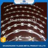 Bto 22 heißer eingetauchter galvanisierter Rasiermesser-Stacheldraht für Zaun