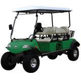 Buggy con errori di caccia della batteria elettrica di golf con la sede 4