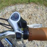 26inch 250W 남성 바닷가 전기 자전거