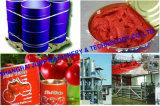 Pianta calda dell'inserimento di pomodoro della macchina dell'inserimento di pomodoro di vendita 36-38%