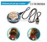 Малый водоустойчивый отслежыватель RF-V32 воротов любимчика GPS для любимчиков кота или собаки