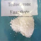 Esteroides de la materia prima del polvo de Enanthate de la testosterona para los amaestradores y los halterófilos