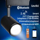 lumière à télécommande sans fil 12W de piste de 2.4G rf Dimmable DEL