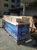Machine d'esquimau/machine 32000PCS/Day (CE, UL) de Popsicle