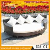 Salotto rotondo del giardino del baldacchino del Bali del patio della mobilia della spiaggia di sofà del rattan esterno di vimini della base con il baldacchino