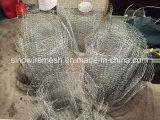 Sailin ha galvanizzato la rete metallica del pollo