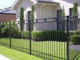 PPGの粉の競争価格の上塗を施してある鋼鉄庭の塀