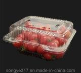مستهلكة شفّافة ثمرة بلاستيكيّة يعبّئ صندوق