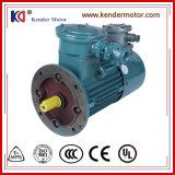 Un motore a corrente alternata di regolamento di fase di induzione di velocità della garanzia di anno