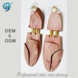Arbre de la chaussure des hommes d'arbre de chaussure de longue vie