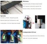 Pequeña máquina de grabado del ranurador del CNC 6090 para el precio de madera de la relevación 3D