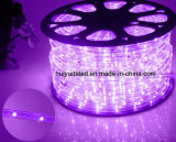 LED 밧줄 빛 또는 옥외 Light/LED 지구 빛 또는 네온 등 또는 크리스마스 불빛 또는 휴일 빛 또는 호텔 빛 또는 바 가벼운 라운드 2 철사 녹색 25LEDs 1.6W/M LED 지구