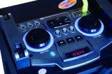 O altofalante passivo de Bluetooth do estágio da potência grande profissional de Feiyang/Temeisheng Dual 12 polegadas E248