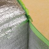 Sacchetto riutilizzabile non tessuto di picnic del dispositivo di raffreddamento del ghiaccio stampato laminazione
