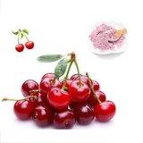 Antocianidas pó da fruta da cereja preta de 1% a de 25%/extrato cereja preta