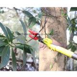 Ilot 0.6-4 pollici Meter/70.8-122 ha tagliato & tiene Pruner telescopico con ha veduto per la potatura dell'albero