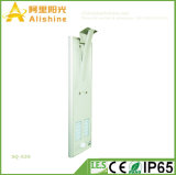 Новый светильник сада уличных светов оптовой продажи СИД фабрики 30W солнечный напольный