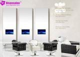 De populaire Stoel Van uitstekende kwaliteit van de Salon van de Stoel van de Kapper van de Spiegel van de Salon (P2004F)