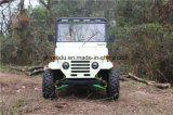 자동적인 전기 성인 ATV 의 농장을%s 소형 지프