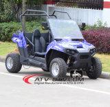 1500W-3000Wシャフトドライブ電気UTV