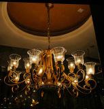 Lampadario a bracci della decorazione della Cina per la casa o l'hotel fatto di vetro