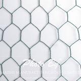 Шестиугольная ячеистая сеть для пользы Gabion