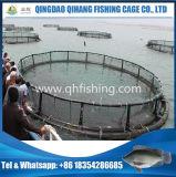 Sistema de cultivo da gaiola do HDPE para a cultura aquática do Tilapia