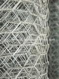 Fabrik-bester verkaufengestrickter Maschendraht-Typ und Gabion Ineinander greifen-sechseckige Draht-Filetarbeit