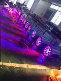 19PCS het PARI van het LEIDENE Gezoem van RGBW kan Licht opvoeren