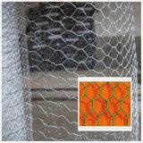 Tela metálica/acoplamiento de alambre hexagonales de las aves de corral