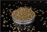 Qualità di Masterbatch del granulatore del fornitore di fabbricazione dell'oro di plastica di Masterbatch Pet/ABS migliore