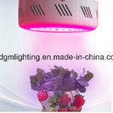 플랜트를 위한 70-75W Gp LED 빛은 실내에 증가한다 램프를 증가한다