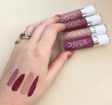 Washami дешево оптовое шальное цветастое косметическое продолжительное Lipgloss для девушок