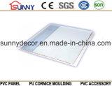 Горячий штемпелюя потолок Панел-PVC PVC, панель стены PVC